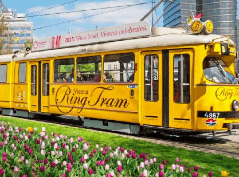 HOP ON HOP OFF & Spaziergang & Vienna Ring Tram