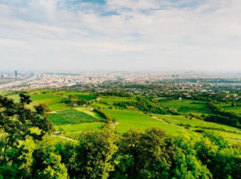 Wien Panorama tour mit Schifffahrt